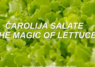 AM Agro The Magic of Lettuce